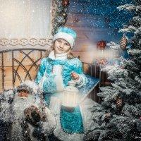 новогодняя :: Ирина Митрофанова студия Мона Лиза