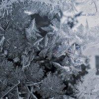 Зимняя сказка 4 :: Юлия ♥♥♥