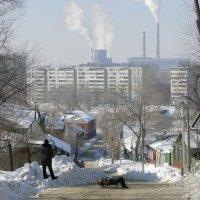 Почти деревня :: Елена Шемякина
