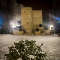 снежок ................. :: Иван Синицарь