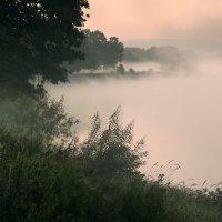 Morning mystical V... :: Roman Lunin