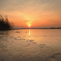 Закат на озере. :: Hаталья Беклова