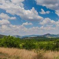 Pilanesberg national park. ЮАР :: Ирина Краснобрижая