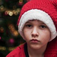Деда мороза не будет, Деда мороза Нет!!! :: Сергей Шефер