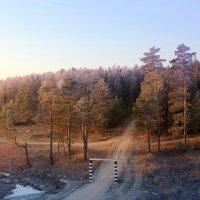 Дороги, дороги. :: Сергей Михайлов