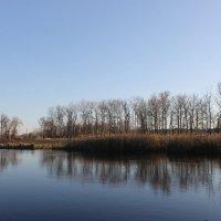 Северский Донец в конце октября. :: Валентина ツ ღ✿ღ