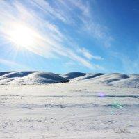 Зимний пейзаж в Каркаралинске :: Alexander N