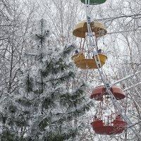 В зимнем парке так бело, так бело.... :: Людмила