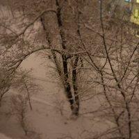 магическая зима :: Евгения Пикановская