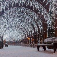 Новогоднее настроение :: Дмитрий Рогачёв