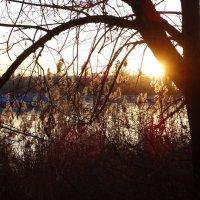 Симфония заката... :: Тамара (st.tamara)