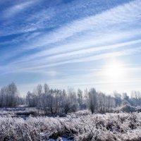Десятиградусный мороз... :: Анатолий Клепешнёв