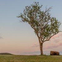 Рассвет ЮАР :: Ирина Краснобрижая