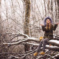 Зимний лес прекрасен. :: Светлана Мишалова