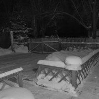Зима только началась :: Алексей Масалов