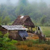 Эдуард Берелет - Раннее утро в ланкийской деревне