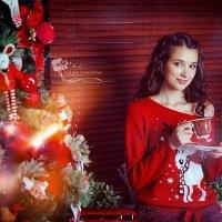 Новогоднее настроение :: Юлия Вяткина