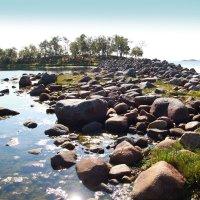 Природа севера :: Карпухин Сергей