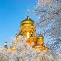 Зимняя сказка :: Elena Izotova