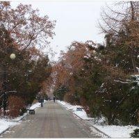 В начале зимы на Пушкинском бульваре... :: Тамара (st.tamara)
