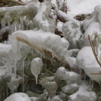 в ледяном плену :: tgtyjdrf
