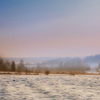 Зимняя, вечерняя с туманом... :: Александр Никитинский