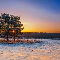 Про вечерний свет и краски... :: Александр Никитинский