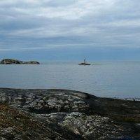 На берегу Норвежского моря :: Клара Кузнецова