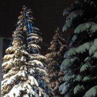 Зимний вечер :: Валюша Черкасова