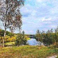 Облетают  листья. :: Валера39 Василевский.
