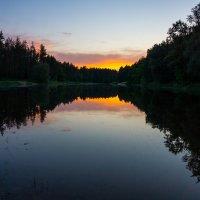Пруд в лесу :: Alex Bush