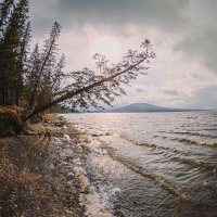 На берегу озера Зюраткуль :: Владимир Кочкин