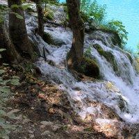Плитвицкие водопады :: Ольга