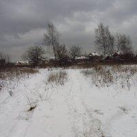 IMG_7301 - Декабрь как он есть :: Андрей Лукьянов
