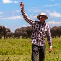 Путешествие по национальным паркам Танзании :: Сергей Андрейчук
