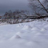 Южный берег Финского залива :: Юрий