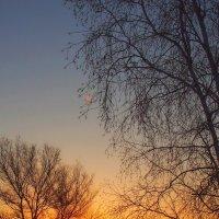 восход солнца морозным утром :: Николай Сапегин