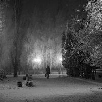 уходящий в снежную ночь... :: Алексей Бортновский