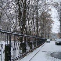 первый городской снежок... :: Галина Филоросс