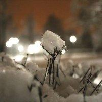 Снег :: Екатерина Пинашина