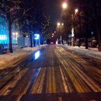 дорога в парке Сокольники в декабре :: Павел Михалев