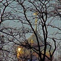 купола храма  Свято-Успенского Одесского патриаршего мужского монастыря :: Александр Корчемный