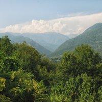 Кавказ :: janart janart