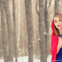 Зимняя сказка :: Maxim Beykov