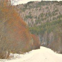 Дорогой зимней в горах :: galina tihonova