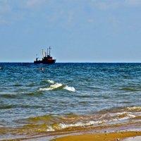 Летнее море :: Елена