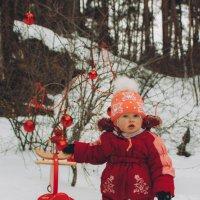 Зима :: Olga Shustova