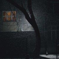 Одна спокойная ночь :: Владимир Сараев