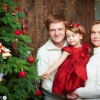 Новогодняя фотосессия :: Наталья Жукова