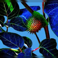 Натюрморт с листьями :: Владимир Хатмулин